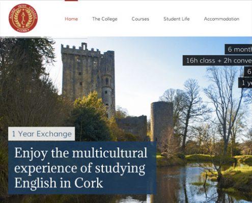 Allied Irish College